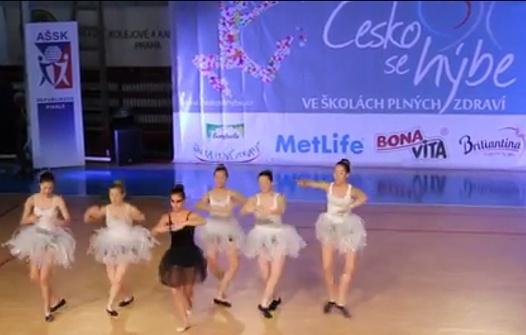 Česko se hýbe 2014 - celorepublikové finále